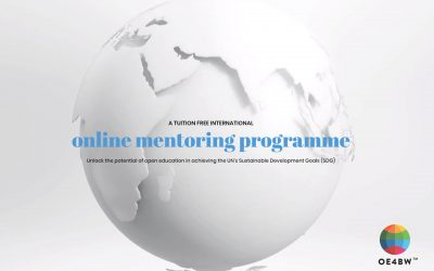 OE4BW mentoring programme 2020